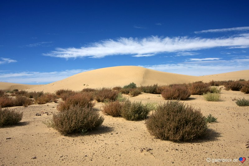 Chaco River Dunes
